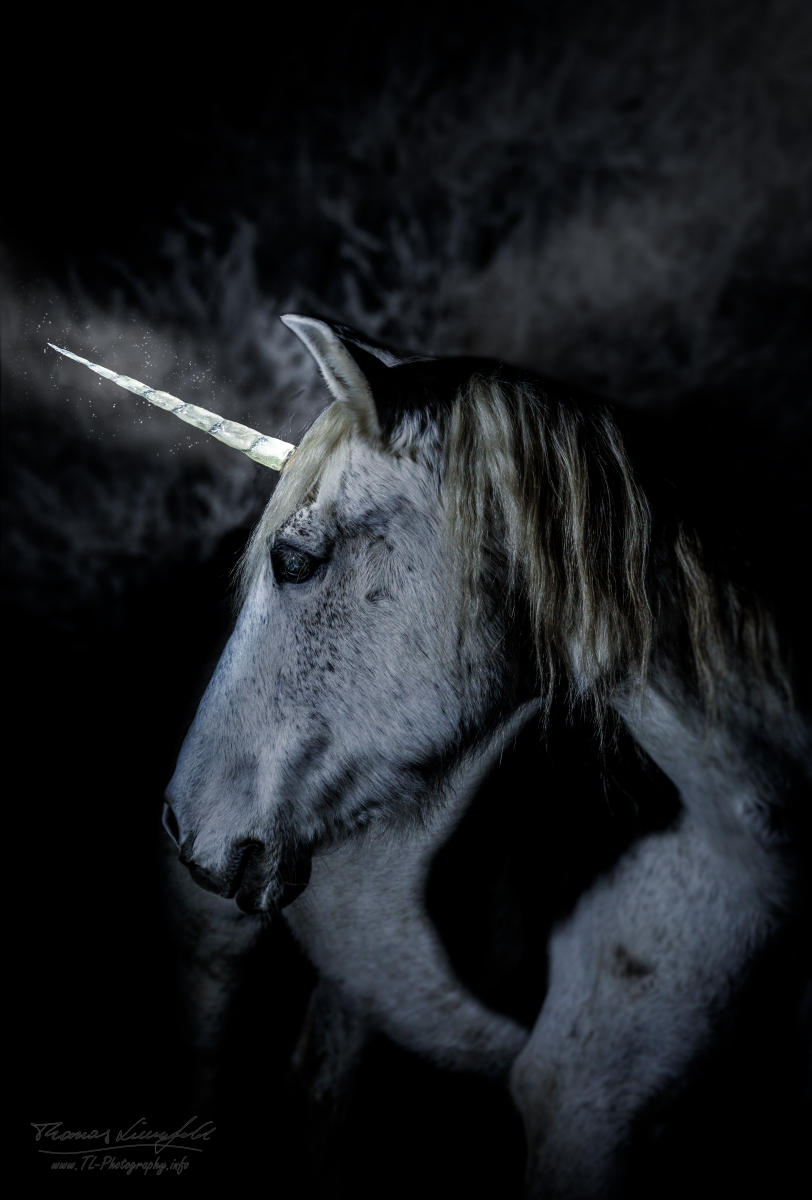 White-Unicorn
